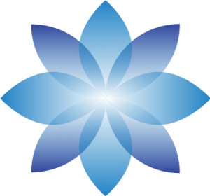 TVN Solutions Logo